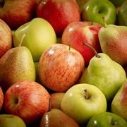 Jádrové ovoce