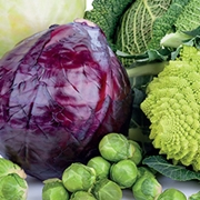 Košťálová zelenina